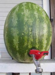 Watermelontap